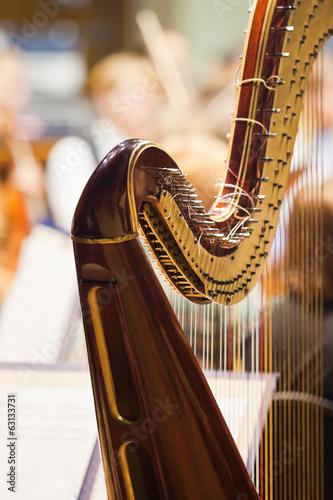 Valokuva Fragment of a harp on stage closeup