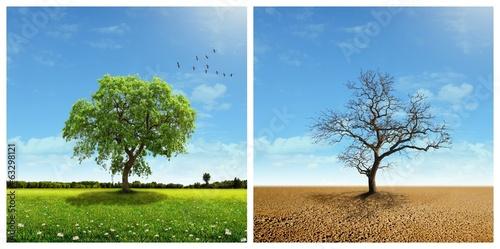 Global warming Fototapeta