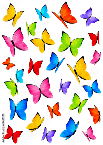 Color butterflies isolated on white #63409351