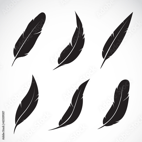 Vector group of black feather isolated on white background Fototapet