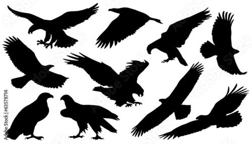 Canvas eagle silouettes