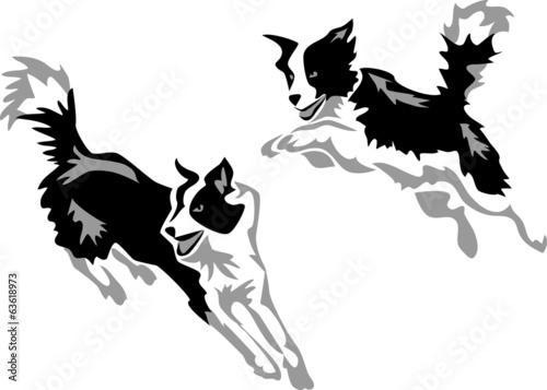 stylized jumping border collie Fototapete