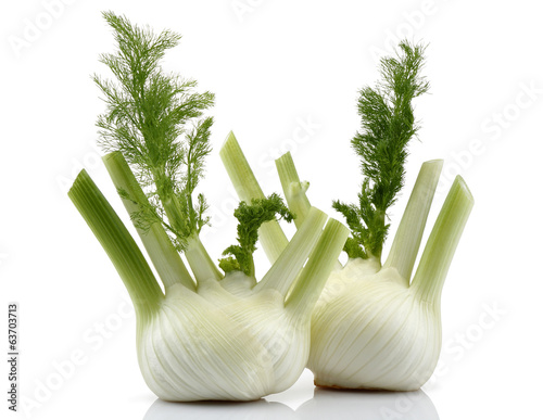 Two Fennel