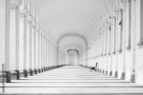 Long baroque colonnade in black and white tone Fotobehang