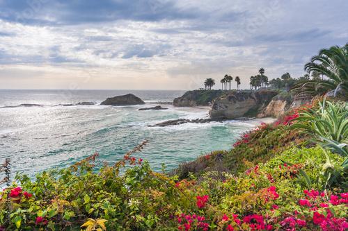 Fototapeta premium Piękny park przy Laguna Beach