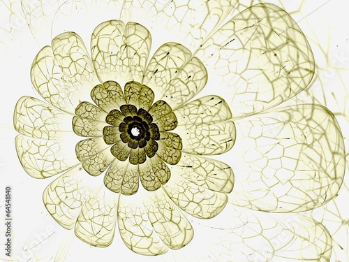 yellow fractal flower with yellow details on petals, on white