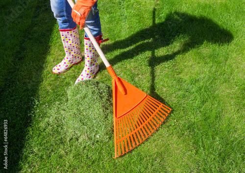 Woman raking freshly cut grass in the garden Fototapeta