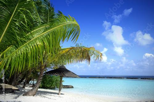 Canvas Print Beautiful Beach with blue sea & blue sky