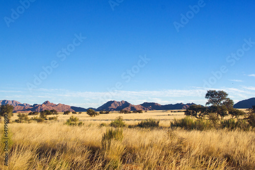 Fotografie, Obraz African savanna landscape, Namibia, South Africa