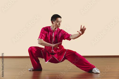Canvas Print Kung Fu,Baguazhang,Ban mabu tuizhang,asiatische Kampfkünste