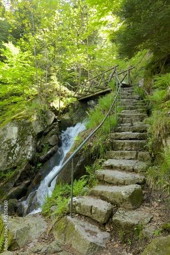 Fototapeta premium Wodospady Gertelbach, Kamienne Schody Czarnego Lasu