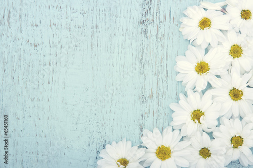 Vintage background with white daisies