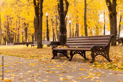 Fotografija Empty bench in park