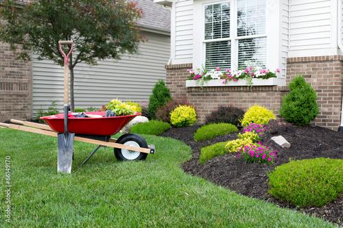 Valokuva Planting a celosia flower garden around a house