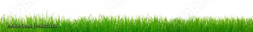 Green grass #66212385