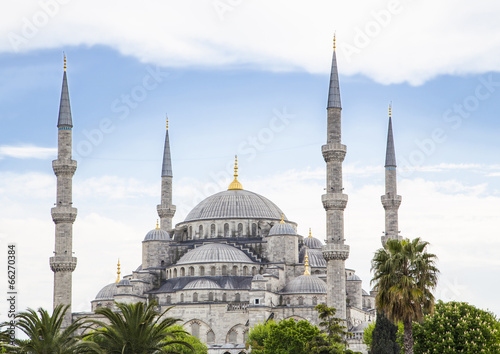 Fotografie, Obraz blue mosque in istanbul on a sunny day