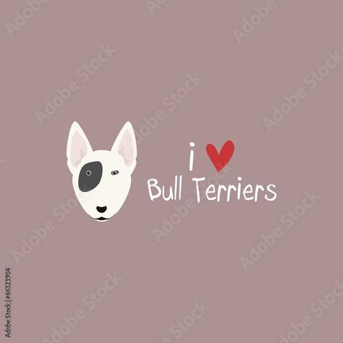 Photo I Love Bull Terriers