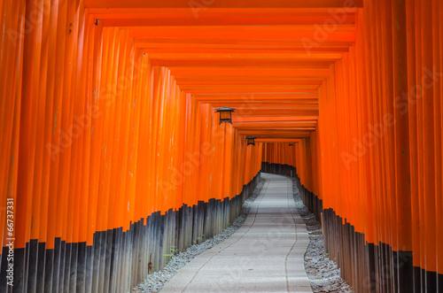 Fotografia Fushimi Inari-taisha shrine in Kyoto