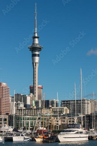 Auckland marina with Sky Tower