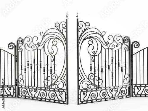 Iron gate Fototapeta