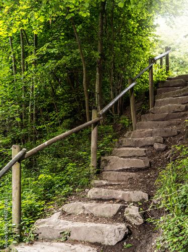 Fototapeta premium Schody w lesie