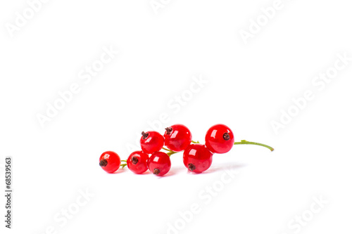 Photo Redcurrant isolated on the white background