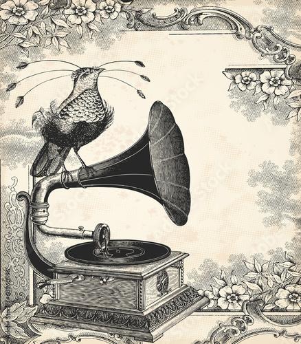 Fototapeta premium Muzyka ptaków