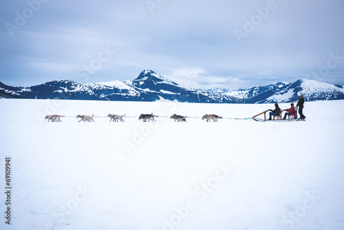 Canvas Print Tourists are pulled by a dog sled along the Norris Glacier in Al