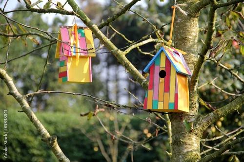 Vogelhaus am Obstbaum Fototapete