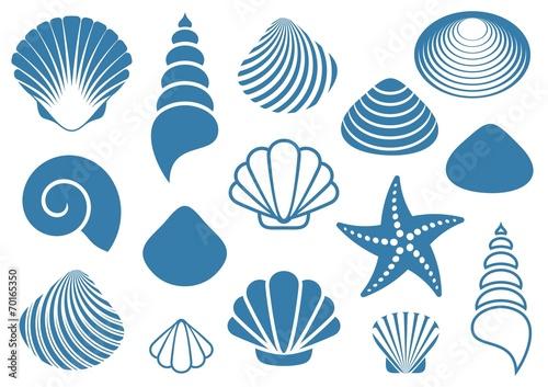Fotografering Sea shells