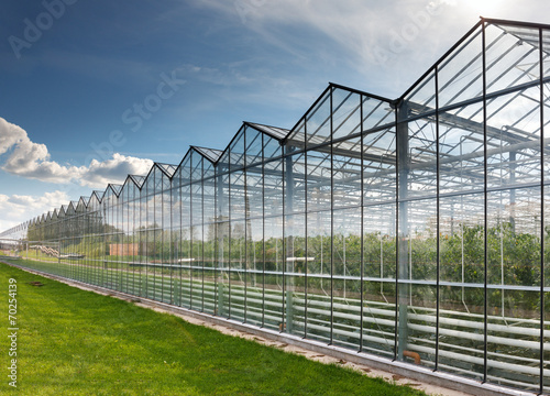 Canvastavla greenhouse vegetable production