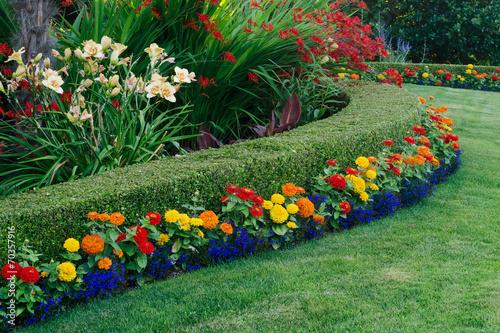 Photo Colorful Garden