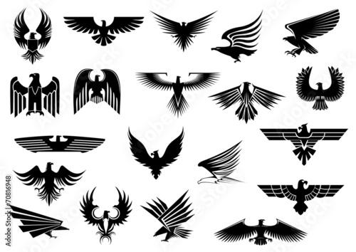 Canvas-taulu Heraldic eagles, falcons and hawks set