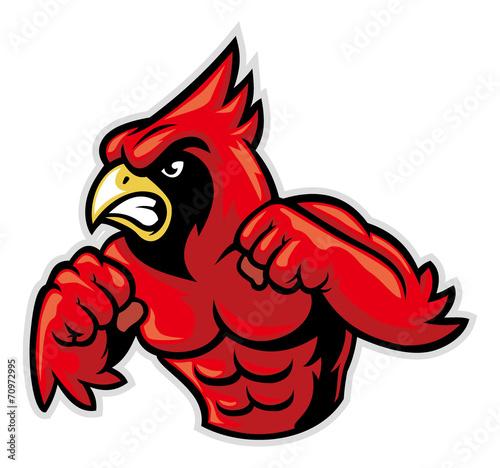 cardinal bird mascot show his muscle Tapéta, Fotótapéta