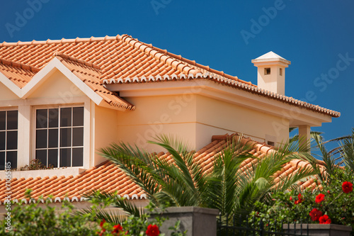 Photo Tiled roof of a large house