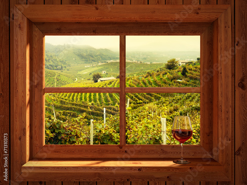 Fototapeta Widok z okna na winnice duża