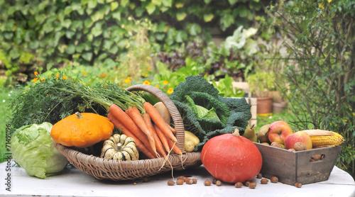 légumes posés sur table dans jardin