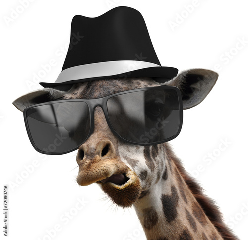 Funny animal portrait of a giraffe with shades and fedora фототапет
