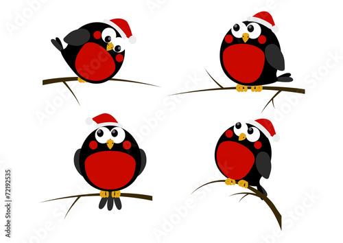 Obraz na płótnie Set of cartoon Christmas birds
