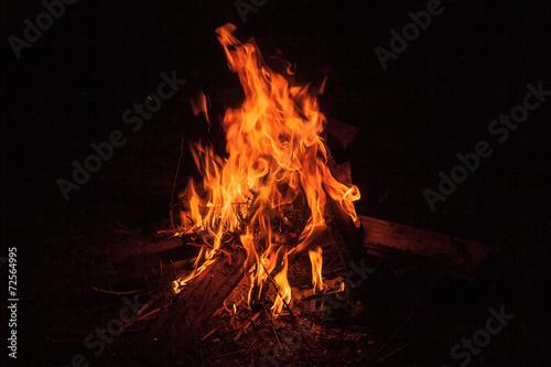 Cuadros en Lienzo Bonfire at night