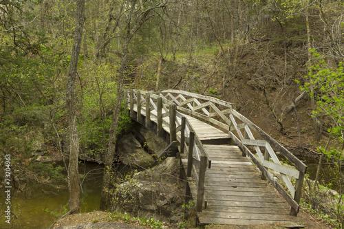 Obraz na plátně Ramsey Creek Scenic