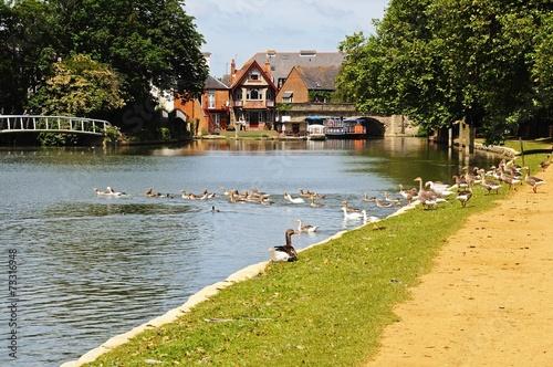 Carta da parati View along the River Thames, Oxford © Arena Photo UK