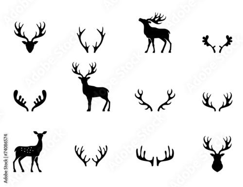 Murais de parede Set of antlers, silhouette, vector