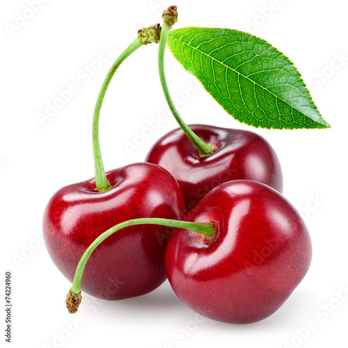 Canvas Cherry with leaf isolated on white.