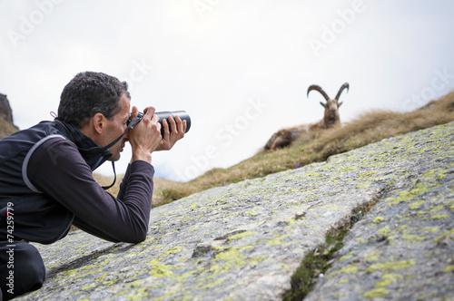Obraz na płótnie fotografo naturalista. Parco Nazionale Gran Paradiso, Italy