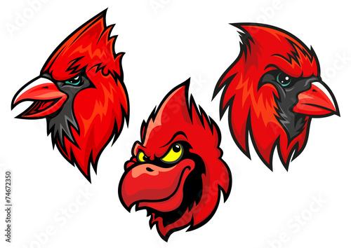 Foto Cardinal bird heads set