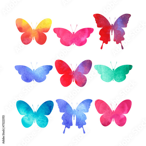 watercolor butterflies set isolated on white #75223113