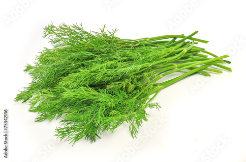 Canvas Print dill isolated on white