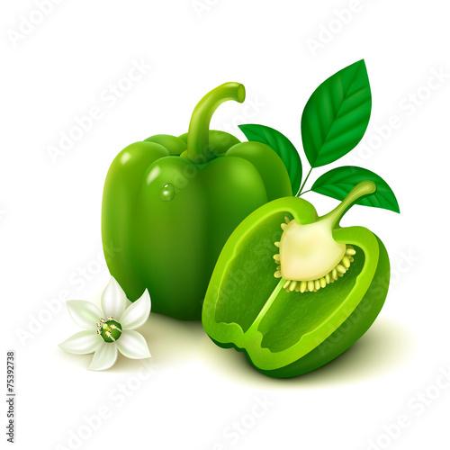 Green bell pepper (bulgarian pepper) on white background Fototapeta