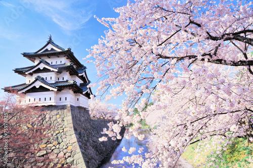 弘 前 城 Fototapete